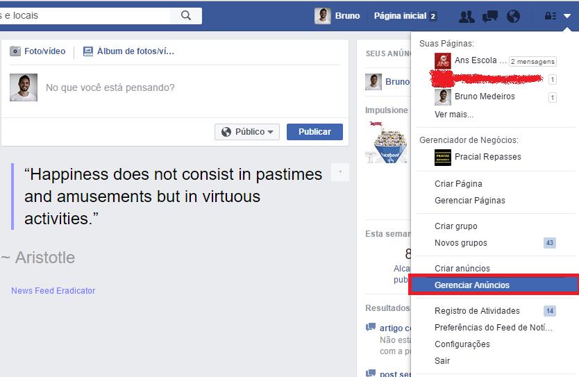 gerenciador-de-anuncios-facebook-ads