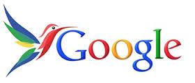 beijaflor google