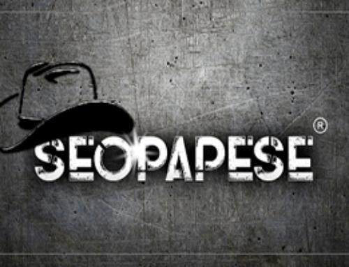 Curso SEOPAPESE: Funciona? A minha visão sobre o treinamento