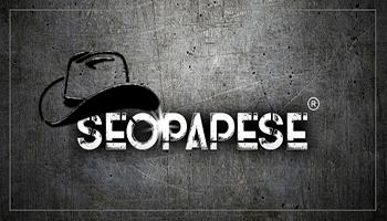 curso-seopapese-funciona